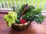farm veggies 2